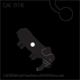 CAI016