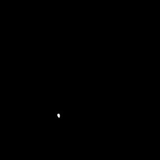 CAI 083